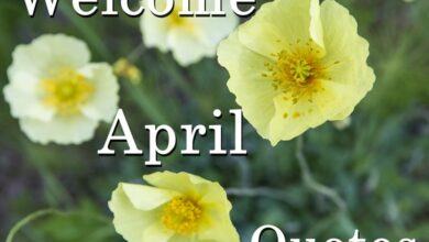 Photo of 45 Welcome April Quotes to a Month with Many Inspirational