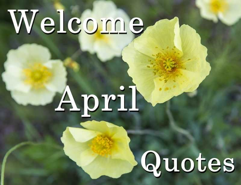 45 Welcome April Quotes to a Month with Many Inspirational