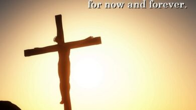 Photo of Good Friday 2020 Quotes to Think About and Renew Belief